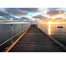 Morning Glory, Mornington Peninsula, Australia Photographic Print