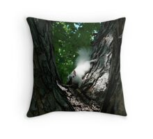 Albino Red Squirrel Throw Pillow
