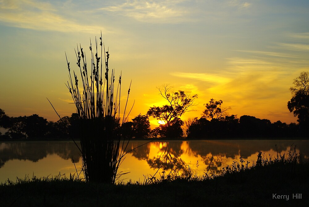 Golden Sunrise by Kerry  Hill