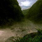 Lower Falls - Ellenborough Falls by Greg Clifford