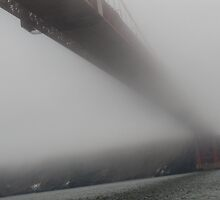 Under the Golden Gate Bridge on a foggy Autumn morning by meredith175