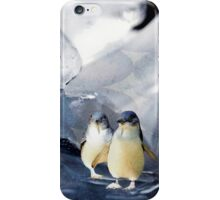 small floe iPhone Case/Skin