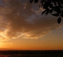 Sunrise by Melt