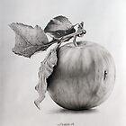 Just an apple by Dietrich Moravec