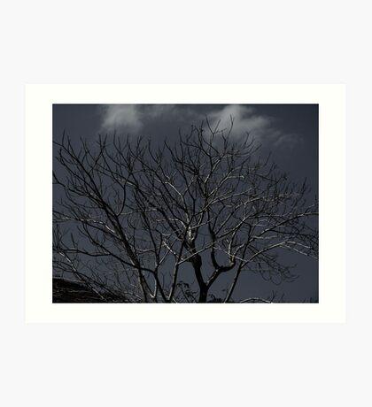 cursed tree Art Print