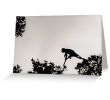 Monkey Silhouette Greeting Card
