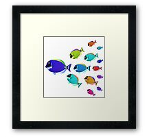 School of colorful fish  Framed Print