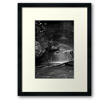 Fairy Falls, Lawson - detail Framed Print