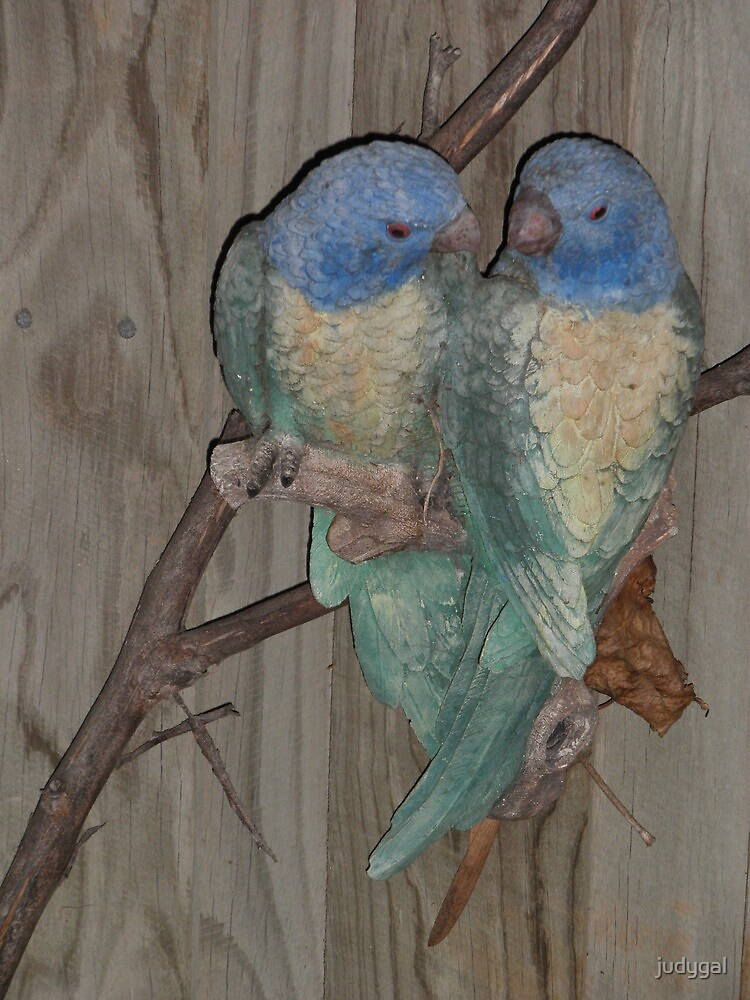 Love Birds by judygal