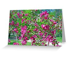 Pink spring flowers on branches Greeting Card
