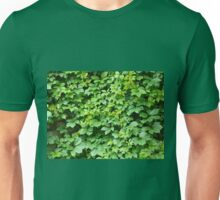 Leaves of ivy Unisex T-Shirt