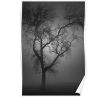 Cemetery Tree in The Fog Poster
