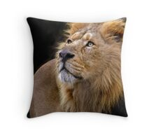In a different light Throw Pillow