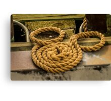 Hidden Mickey Rope Canvas Print