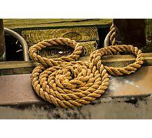 Hidden Mickey Rope Photographic Print