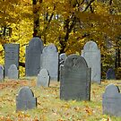 Meeting House Hill Cemetery by Roslyn Lunetta