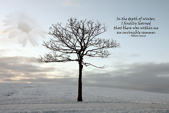 Invincible Summer - Light in the Dark Winter by simpsonvisuals