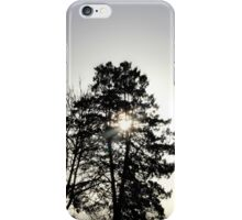 Trees in silhouette iPhone Case/Skin