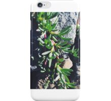 Creeping Summer Plant iPhone Case/Skin