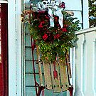 Sled on Porch by Susan Savad