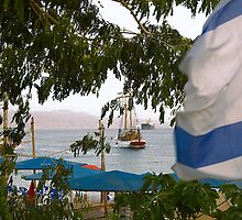 Docking Ship And Israeli Flag by Michael Redbourn