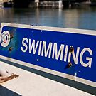 """""""O"""" Swimming - Lee Riverfront Park, Tampa, Florida by rjhphoto"""