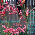Banner For Challenge IIDB by R&PChristianDesign &Photography