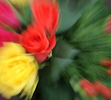 Zoom Blur Flowers by Anina Arnott