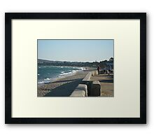 New Year Needs Some Sea Salts Framed Print