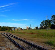 Riding The Rails by Linda Yates