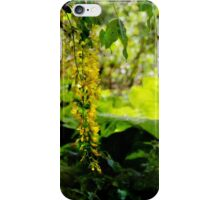 Sunlit yellow ... iPhone Case/Skin