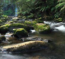 Below Hopetoun Falls by Allan Savage