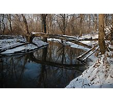 Over the River and Through the Woods Photographic Print