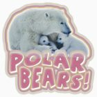 Polar Bears! by grigs
