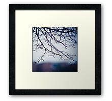 whisper.  Framed Print