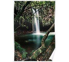 Twin Falls, Maui Poster