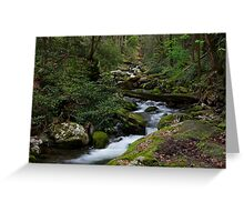 The Roaring Fork Greeting Card