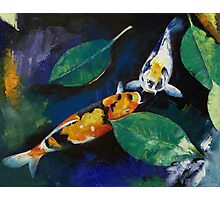 Koi and Banyan Leaves Photographic Print