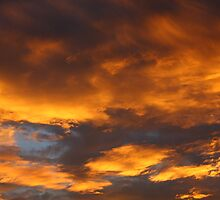 January 1st, 2010 Evening Sky over Sydney by Rainer Krause