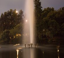 Mounts Bay Road Fountain by Night by Dominic Wilson-Ing