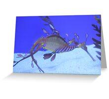 Weedy sea dragon Greeting Card