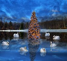 Seven Swans a Swimming by Kathy Weaver
