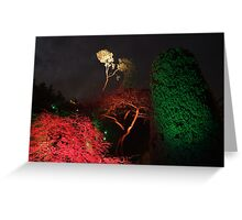 Night in the Sunken Garden(6) Greeting Card