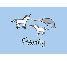 Family - Unicorn, Narwhal, Narwhalicorn Photographic Print