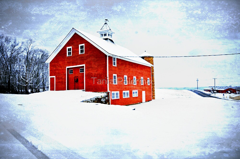 red barn in snow by Tania Palermo