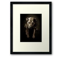 Signature Look Framed Print