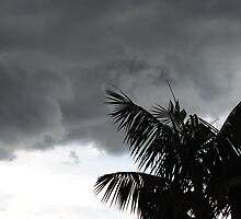 Stormy Suburbs by Debbie Thatcher