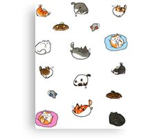 Caturday is Everyday Canvas Print