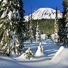 Mount Rainier Winter  by Inge Johnsson