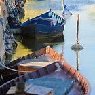 moored boats, Parc Natural de l'Albufera, Valencia, Spain by Andrew Jones